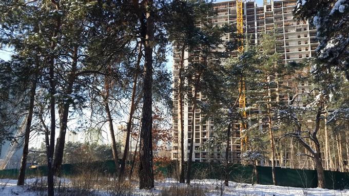 ЖК «Автограф» сосновый лес