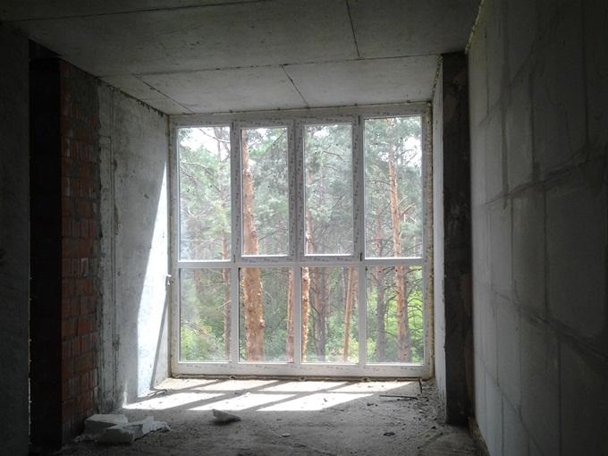 ЖК Ирпенские Липки-2 вид из окна