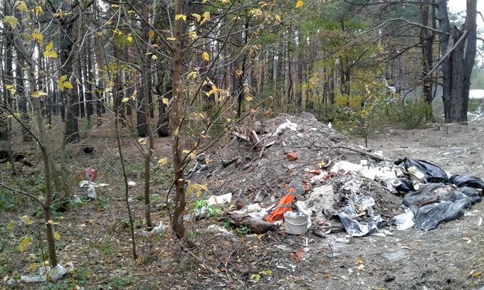 ЖК Лесная сказка мусор в лесу