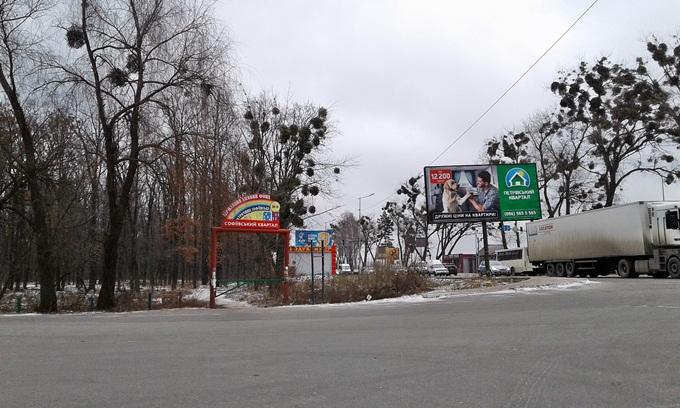 ЖК Софиевский квартал лес