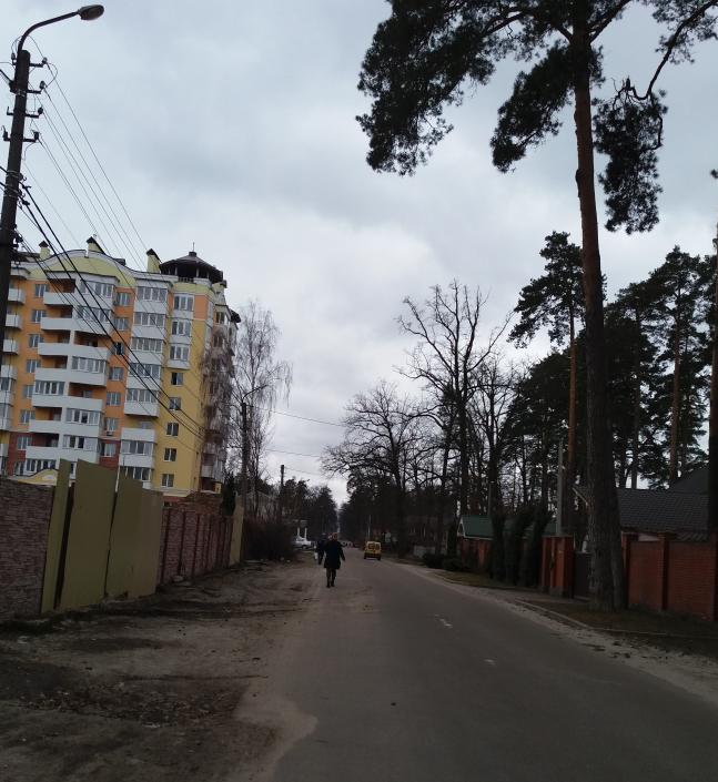 ЖК Паркова оселя Буча улица
