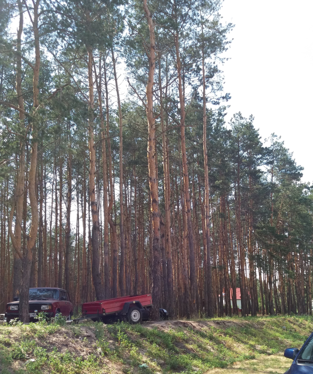 ЖК Есенин 2 в Ирпене парк