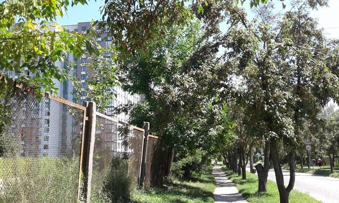 ЖК Парковый квартал Мисто Квитив дорога