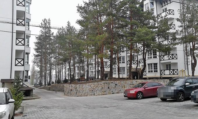 ЖК Десна Резиденс Альпийский городок в Зазимье готовые дома