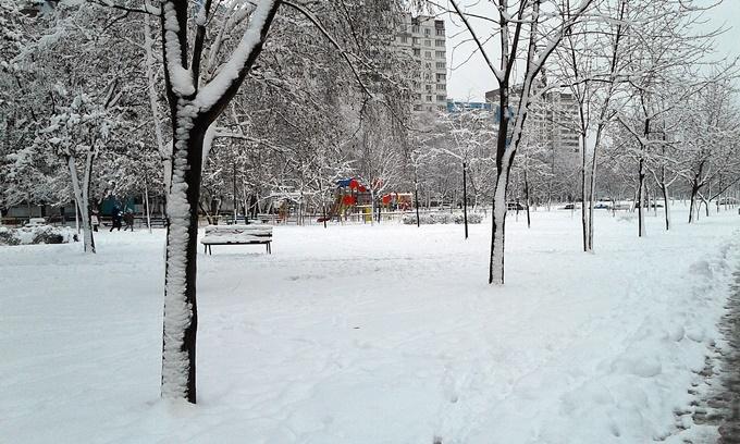 ЖК Бережанский от Галжитлобуд сквер