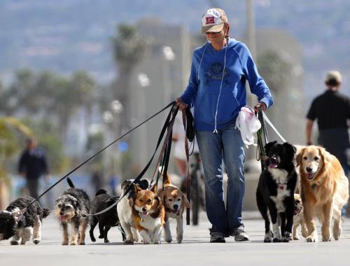 Pet-friendly: новостройки, спроектированные не только для людей